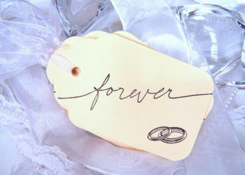 Tikkun olam wedding